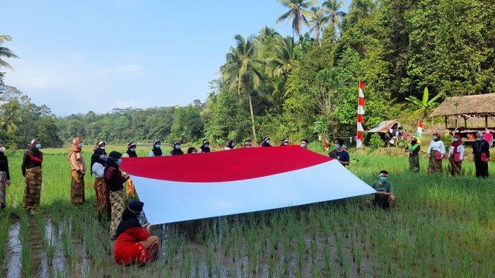 Diiringi Lagu Indonesia Raya, Pemuda-pemudi di Gunungsari Bentangkan Merah Putih di Persawahan