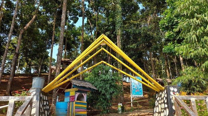 Pesona Bukit Curahem Lebak, Destinasi Wisata Alam Yang Indah Nan Romantis