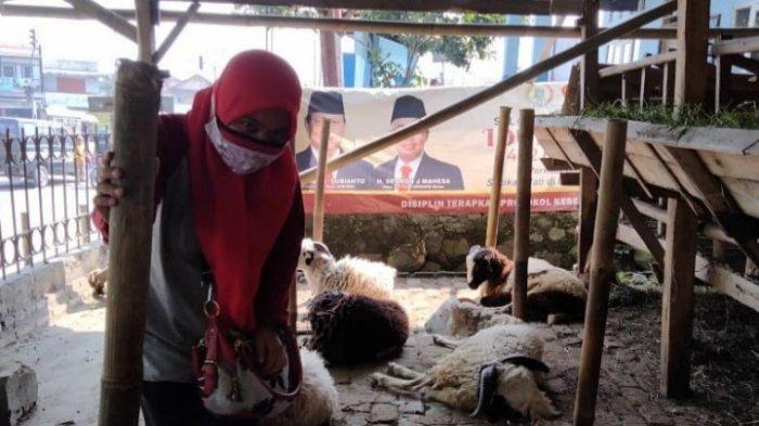 Dinas Peternakan Kabupaten Lebak melakukan pemeriksaan sejumlah hewan kurban yang diperjualbelikan di 28 kecamatan jelang pelaksanaan Idul Adha 1442 Hijriah 20 Juli mendatang.