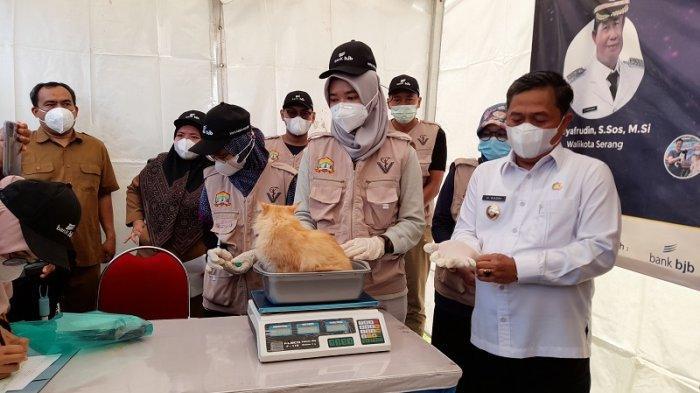 World Rabies Day 2021: 6 Tahun Tanpa Temuan Kasus, Banten Diusulkan Jadi Provinsi Aman dari Rabies