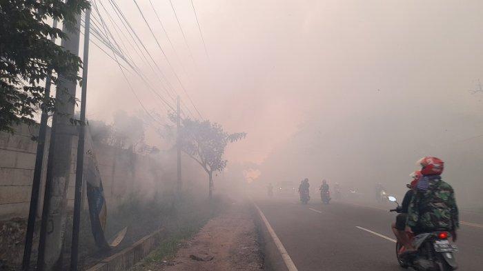 Kebakaran Lahan, Asap Tebal Ganggu Jarak Pandang Pengendara di Jalan Raya Serang