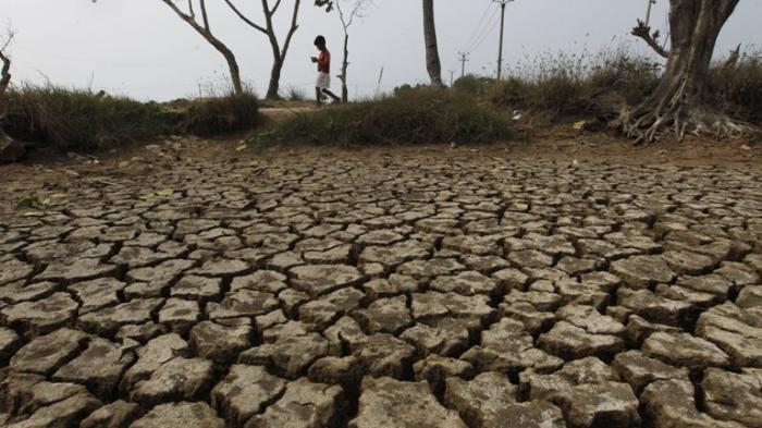 Termasuk Banten, Beberapa Wilayah Ini Alami Hari Tanpa Hujan Panjang, Siaga Kekeringan
