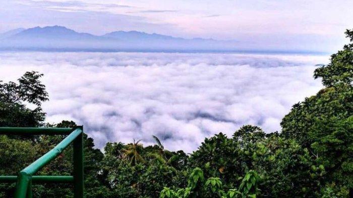 Situs Purba Rawa Danau di Serang Masuk Prioritas Nasional Penyelamatan Danau