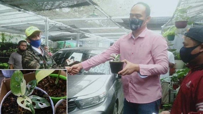 Sosok Denny Lacon yang Rela Mobilnya Ditukar dengan Janda Bolong, Menteri Sampai Kaget Tahu Harganya