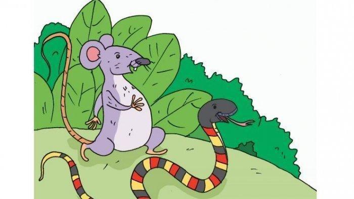 KUNCI JAWABAN Tema 7 Kelas 2 SD/MI Halaman 131, Tuliskan Kalimat yang Diucapkan Tikus kepada Kucing!