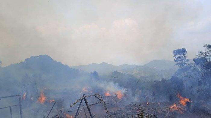 Pemukiman Baduy Luar Terbakar, BPBD Kabupaten Lebak Bangun Pos Pengungsian 7 Selama Hari ke Depan