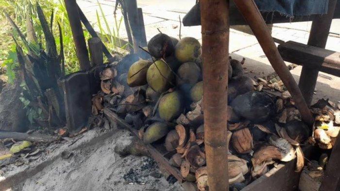 Seruput Kelapa Bakar di Kota Serang, Kaya Rempah dan Khasiat