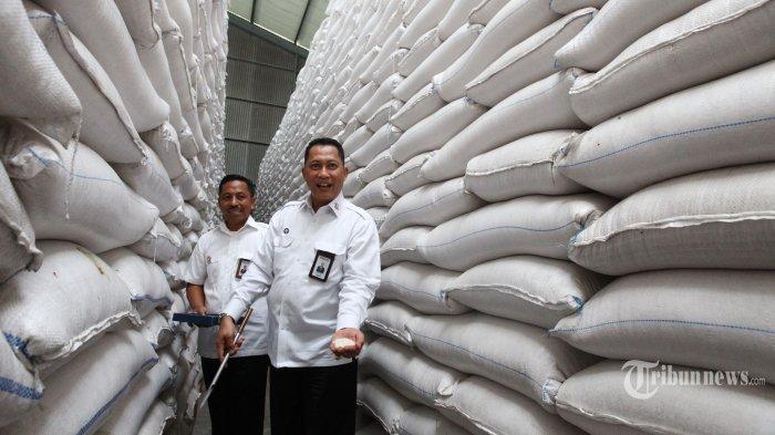 Indonesia Surplus Beras 12 Juta Ton, Pemerintah Harus Buat Terobosan Ekspor Bukan Impor