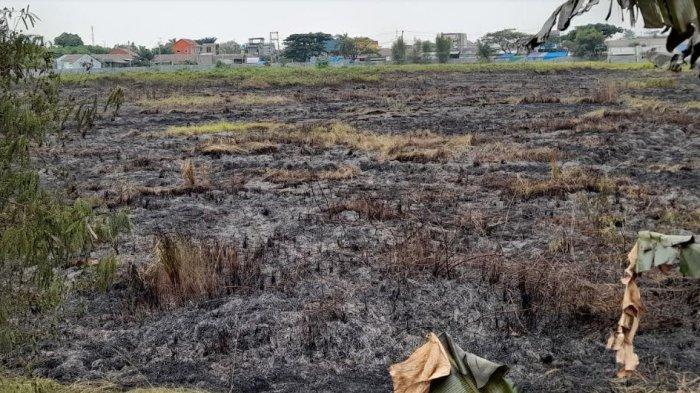 Lahan Kosong di Serang Terbakar, Diduga dari Warga yang Bakar Sampah