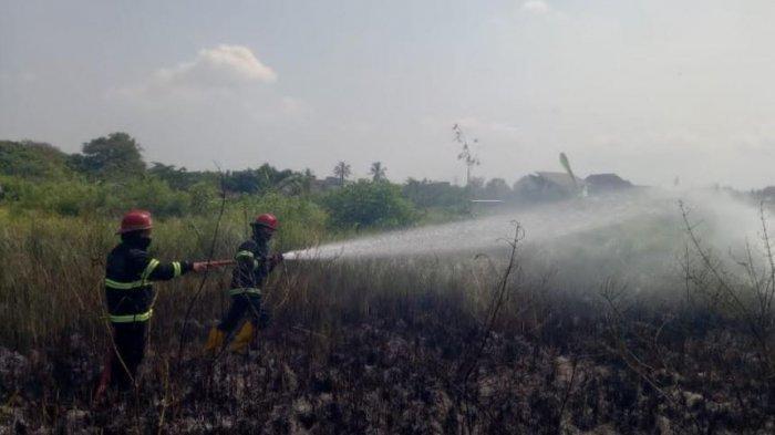 Lahan Kosong Seluas Satu Hektar di Cilegon Terbakar, Diduga Karena Bakar Sampah yang Ditinggal