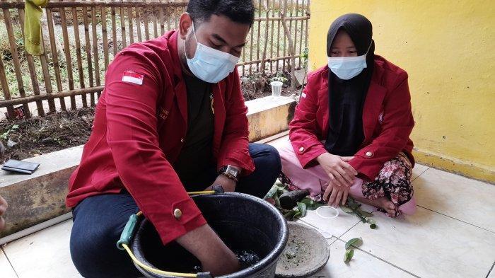 Mahasiswa Uniba KKM di Carenang Kabupaten Serang Ubah Pestisida Jadi Pupuk Alami