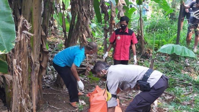 Pria Misterius Ditemukan Tewas di Kebun Pisang Cisauk, Ciri-cirinya Berambut Cepak & Bergigi Ompong