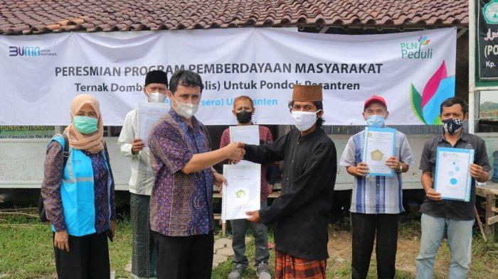 PLN UID Banten Melalui PLN Peduli Kembangkan Program Domba Listrik untuk Lima Pondok Pesantren