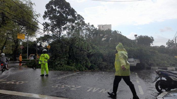 Pohon tumbang menimpa satu angkutan umum di persimpangan dekat Alun-alun Kota Serang, Kamis (15/4/2021).