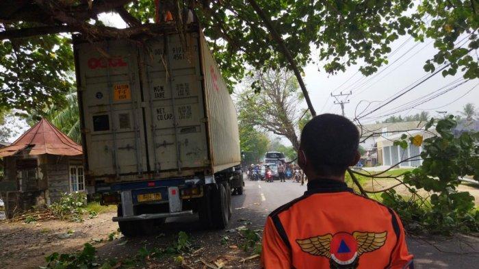 Pohon Tumbang Sempat Tutup Jalan Raya Anyer Kabupaten Serang, Kemacetan Panjang hingga 2 Kilometer
