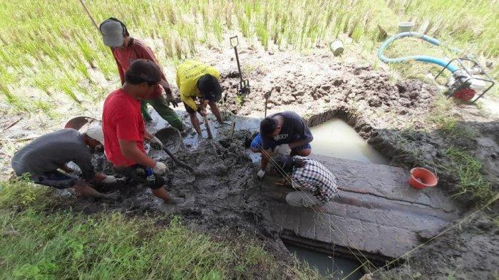 BPCB Banten Gandeng Mahasiswa Arkeologi Bantu Penggalian Situs Peninggalan Masa Kesultanan