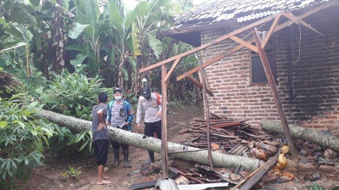 Rumah Warga Mancak Kabupaten Serang Rusak Tertimpa Pohon Kelapa yang Tumbang Setelah Hujan Deras
