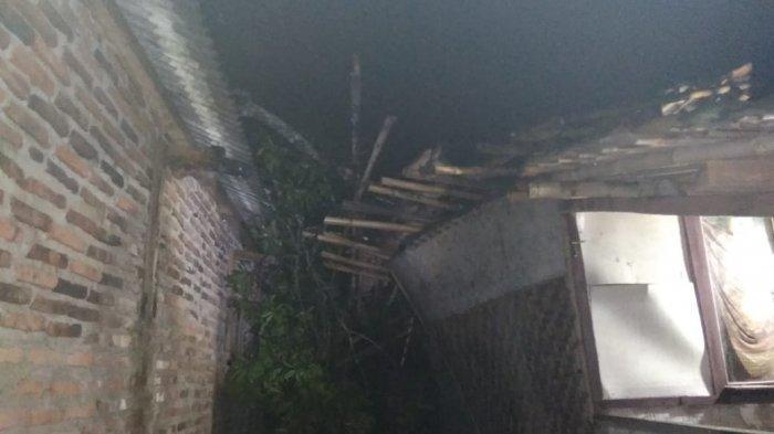 Dua Rumah Warga Tertimpa Pohon Tumbang di Serang, BPBD: Tidak Ada Korban