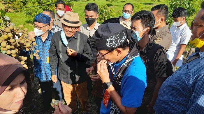 Kunjungi Kampung Agrinex di Pandeglang, Menparekraf: Ini Konsep Wisata Baru Terbuka dan Religius