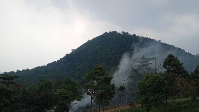 Provinsi Banten Tawarkan Destinasi Wisata Agro