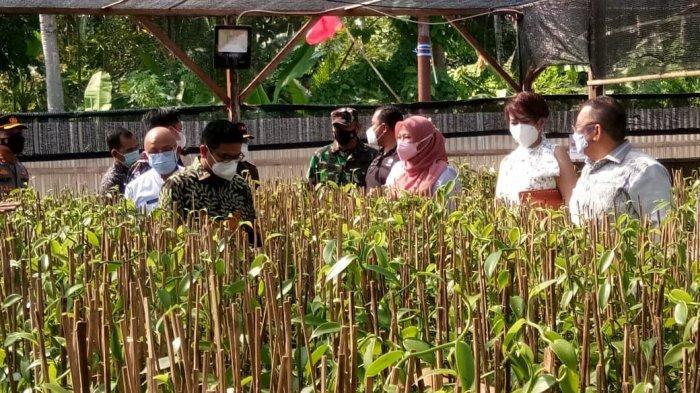Perbaikan Perekonomian, Pemprov Banten Dorong Pengembangan Agrowisata