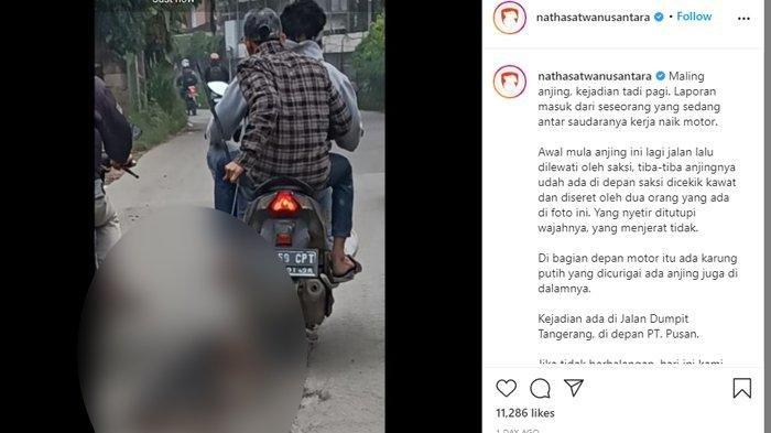 Viral Foto Anjing Diseret Pakai Motor di Tangerang, Ternyata Dicuri Pelaku