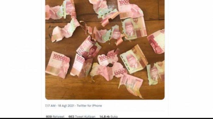 Viral Uang Kertas Digerogoti Rayap, Apakah Bisa Diganti Baru? Berikut Penjelasan Bank Indonesia