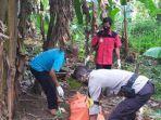 mayat-pria-ditemukan-di-sebuah-kebun-pisang.jpg