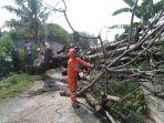 petugas-bpbd-memotong-pohon-tumbang.jpg