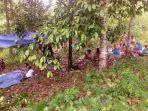 warga-mengungsi-ke-hutan-pasca-gempa-61-magnetudo-di-kabupaten-maluku-tengah.jpg