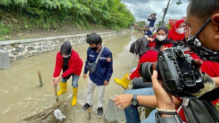 Bisa Dicontoh, Karang Taruna Kabupaten Tegal Sulap Saluran Irigasi Jadi Lokasi Budi Daya Ikan Nila