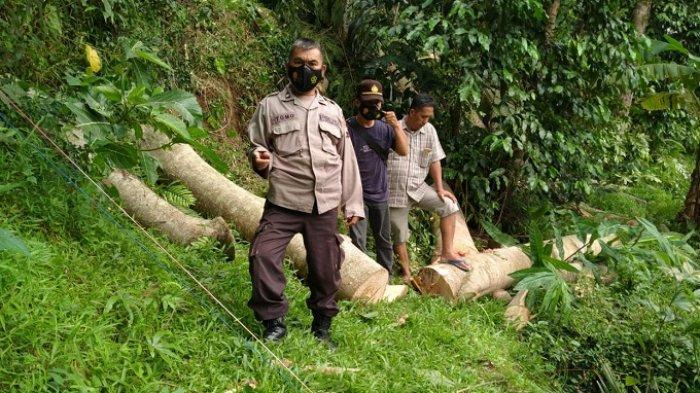 Diduga Kesetrum, Penebang Pohon di Buayan Kebumen Tewas. Tabung BBM Gergaji Mesin Juga Meledak