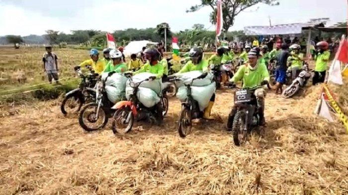 Rayakan Panen Raya, Petani dan Tukang Ojek Gabah di Tegalsari Batang Gelar Balap Motor di Sawah