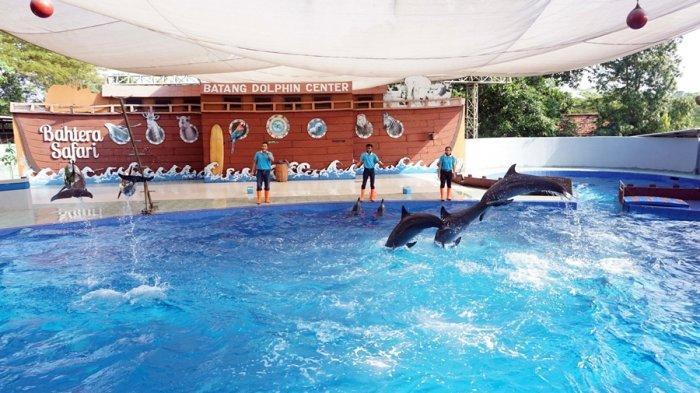 Batang Dolphin Center Buka Pekan Depan, Simak Aturan Buat Wisatawan di Masa New Normal