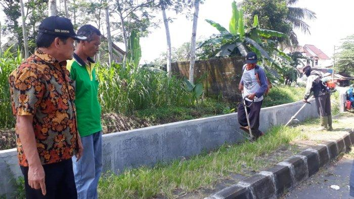 Trotoar Menghijau, Budhi Sarwono Giatkan Pemangkasan Rumput