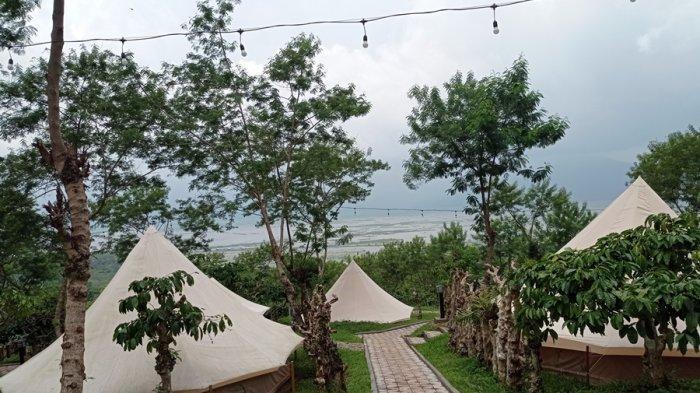 Coffee Cump, Pilihan Asyik Nginap di Tengah Areal Perkebunan Kopi, Hadir di Kabupaten Semarang