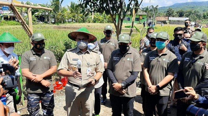 Ikut Panen Padi di Cilacap, Gubernur Anies Baswedan Pastikan Pasokan Beras ke Jakarta Aman