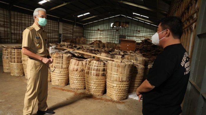 Temanggung Lagi Panen Raya Tembakau, Ganjar: Tolong Perusahaan Percepat Penyerapannya