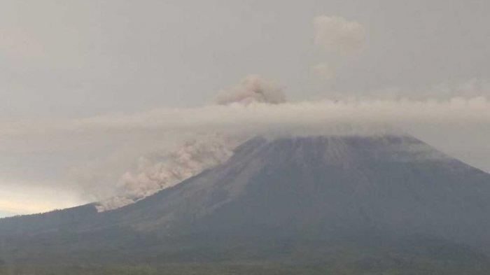 Guguran Awan Panas Gunung Semeru Hingga 2.000 Meter, Lama Gempa 300 Detik