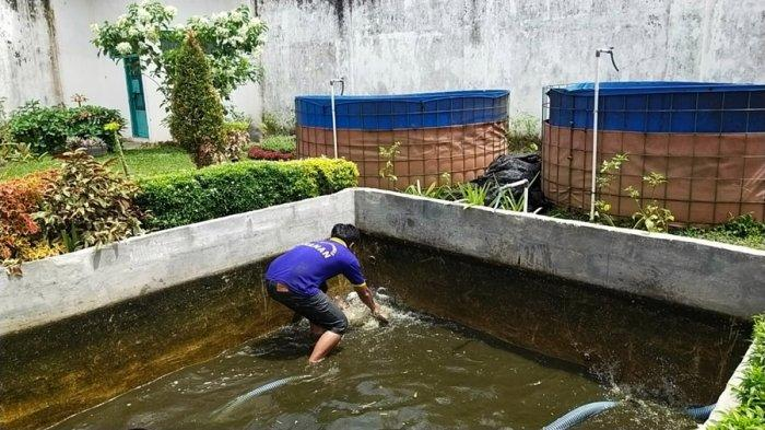 Warga Binaan Rutan Banyumas Panen Ikan Patin, Winarso: Alhamdulillah Dapat 100 Kilogram