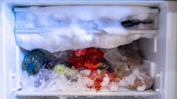 Jangan Biarkan Menumpuk, Ini 6 Cara Mudah Membersihkan Bunga Es Freezer