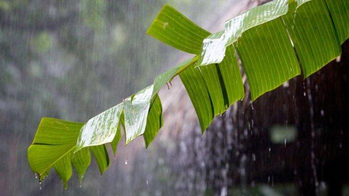 Cuaca Purbalingga Hari Ini, Senin 16 Agustus 2021: Hujan Diperkirakan Turun Siang hingga Malam
