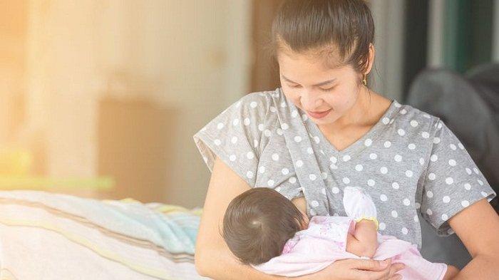 ASI Bisa Mencegah Stunting, Ini Tanaman yang Bisa Memperlancar Air Susu Ibu