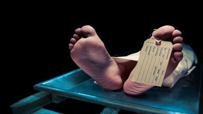 Seorang Dokter Mengaku Melakukan 50 Kali Tindakan Pembunuhan, Jasad Korbannya Diberikan ke Buaya