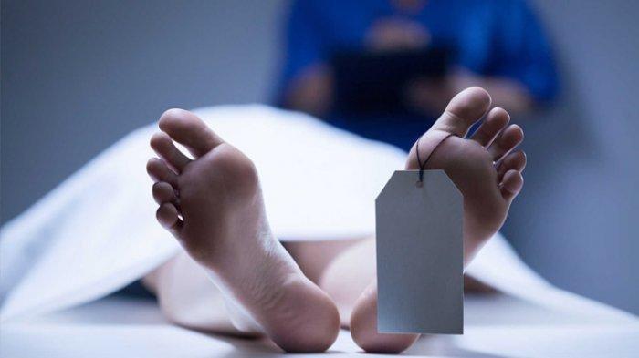 Pria Pengangguran Awetkan Mayat Ibunya di Freezer Agar Tetap Dapat Uang Pensiun