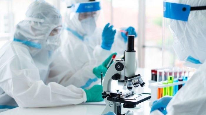 Jika Sudah Siap Pakai, Harga Vaksin Sinovac Produksi Bio Farma Diperkirakan Rp 366.000-Rp 439.000
