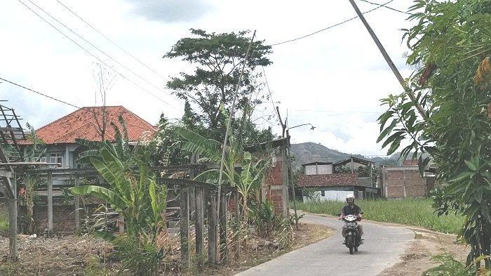 Tak Ada Tiang Permanen, 18 Tahun Jaringan Listrik ke Rumah Warga di Gondoharum Kudus Disangga Bambu
