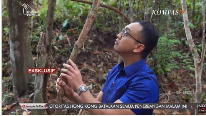 Khasiat Kayu Bajakah Kalimantan dan Ciu Wlahar, Bahan Membuat Hand Sanitizer Cegah Virus Corona