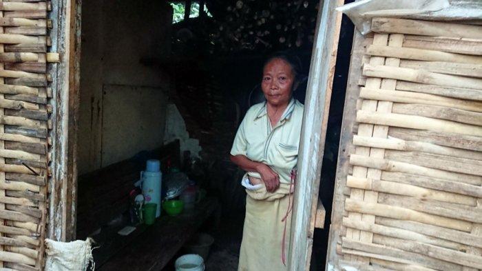 Kisah Ponem dan Turah di Batang, Dua Nenek Pemetik Teh Ini Huni Gubuk Reyot, Makan Dibantu Warga