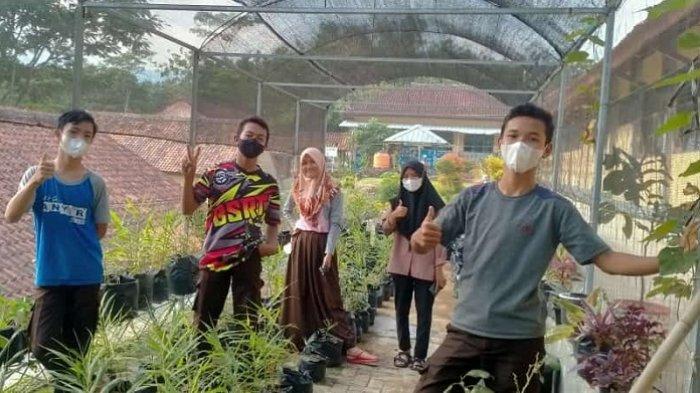 Manfaatkan Lahan Kosong di Sekolah, Siswa SMPN 2 Cimanggu Cilacap Belajar Bertani Stroberi